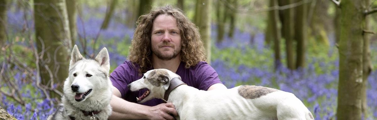 Bluebells with dogs